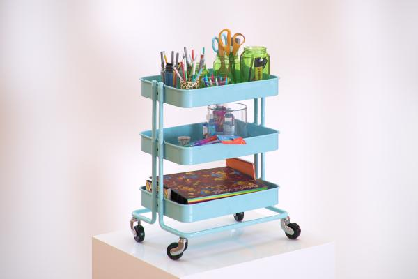Rolling storage shelves