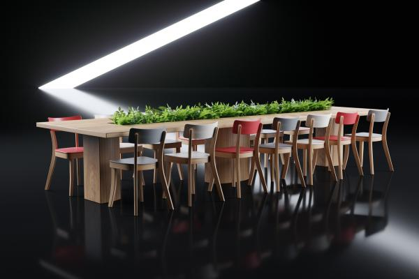 Large dining table with chairs and plants